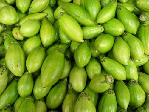 Jiló-comprido-verde-claro