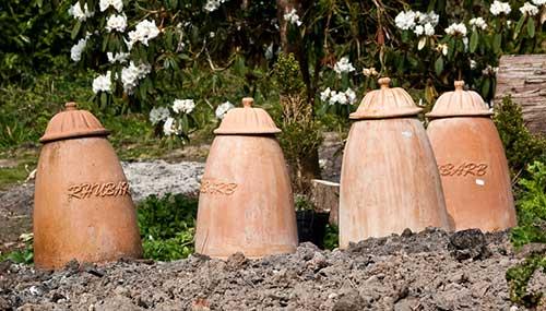 Cerâmicas usadas no branqueamento do ruibarbo